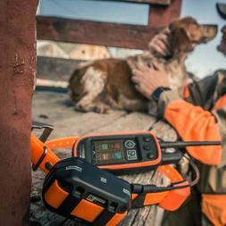 Garmin Alpha 100 and TT 15 Dog Track & Train System Collar a
