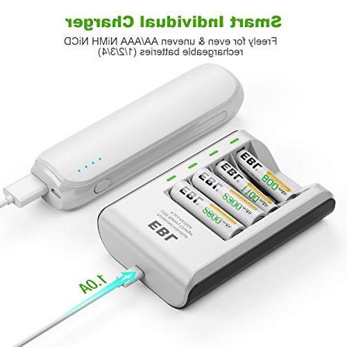 Ni-CD Individual Charger Batteries 4