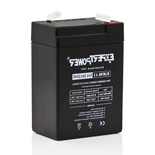 ExpertPower 6V Amp Battery
